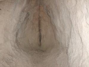 Utroba - vagina